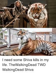 Shiva Meme - twd nations i need some shiva kills in my life thewalkingdead twd