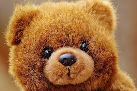 stuffed teddy bears walmart com 55 u201d giant bear plush from walmart heraldextra com