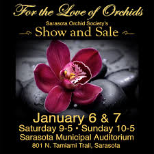 orchids for sale 2018 show and sale for the of orchids sarasota orchid society