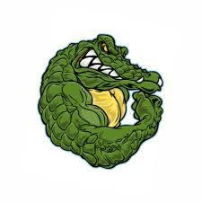 alligator sketch