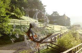 new day new picture fantasy wire