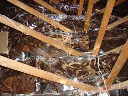 Foil Backed Roof Sheathing by Correct Placement Of Radiant Barriers