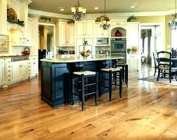 Best Flooring For Pets Best Flooring For Pets Pictures Gallery Of Stunning Types Of