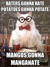Haters Memes - haters gonna hate cat meme cat planet cat planet