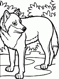 easy wolf coloring pages animal coloring pages