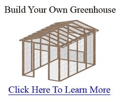 green house floor plans building a greenhouse yourself the right building plans
