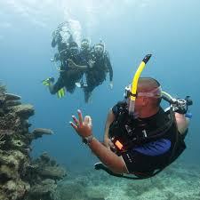 padi divemaster course scuba diving in miami fl best scuba