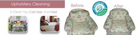 affordable upholstery cleaning company in palm foam