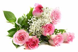 flowers today birthday png rahab removing all hurt and abuse i got flowers