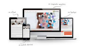 selaginella html 5 responsive design web design graphic design