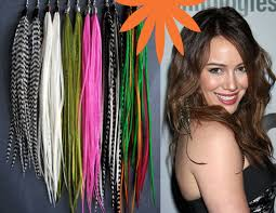 feather extensions feather hair extensions chicago il lakeview