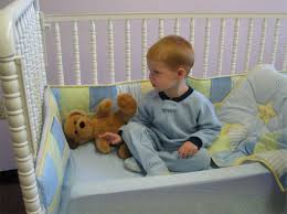 Transitioning Toddler From Crib To Bed by Bed Bug Bumper Great Alternative For Bed Rails Works Great With