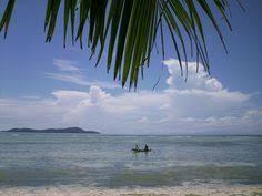 ambon moluccan amazing indonesia ambon pinterest more