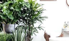 floor plants home decor 92 floor plants home decor snnei indoor artificial plants apple