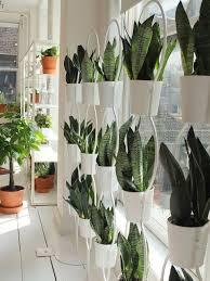Ikea Plant Ideas by Best 25 Ikea Catalogue Ideas On Pinterest Ikea Fabric Ikea