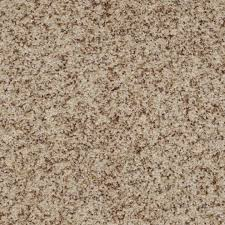 9 best shaw carpet neutral colors images on pinterest shaw