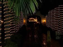 walkway with lights on palm trees picture of dreams