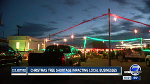 nationwide christmas tree shortage has family owned lots worried