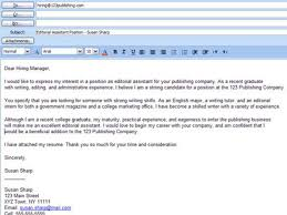 captivating professional resume sample higher english critical