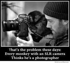 Meme Photographer - thats the problem these days every monkey thinks hes a