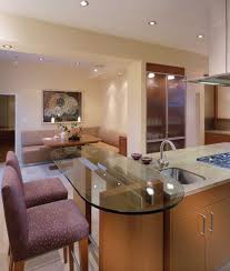 ideas of kitchen designs 21 best solutions for contemporary kitchen decoration