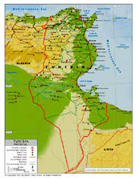 tunisia physical map physical map of tunisia by bestcountryreports