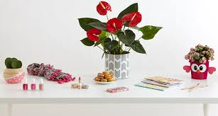 our favorite valentine gifts for friends u0026 family