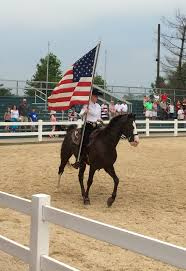Horse With American Flag Belonging And Breed Horse And Home U2013 The Return Of Native Nordic