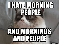 I Hate Memes - i hate morning people and mornings and people memes com hate