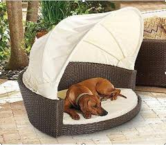 Kong Dog Beds Sell Kong Dog Bed Vsh Dh11 Id 13925195 From Vietstyle Handicrafts