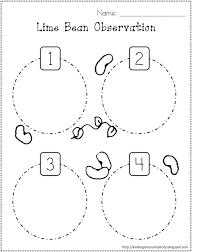 printables plant life cycle worksheet eatfindr worksheets printables