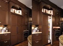 lovely built in u0027fridge home kitchens pinterest