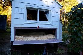 chicken coop floor plan coop planning five features to incorporate into your coop