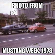 Ford Mustang Memes - the 20 funniest mustang memes so far