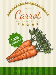 food templates free download carrot poster template retro vector vector cover vector food carrot poster template retro vector