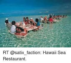 Hawaii Meme - rt hawaii sea restaurant hawaii meme on sizzle