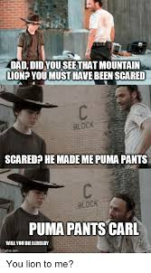 Puma Pants Meme - dad didyouseethat mountain lion youmust have beenscared block scared