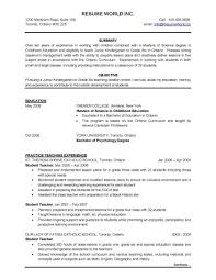 Resume For Management Position Experience Is The Best Teacher Essay