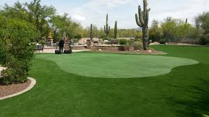install your own backyard putting green l turf photo with