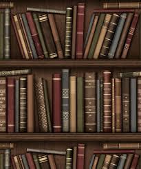 wallpaper that looks like bookshelves bookshelf wallpaper design decoration