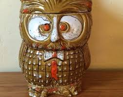 owl canisters for the kitchen owl canister etsy