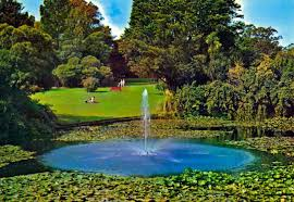 Botanical Gardens Melbourne Royal Botanical Gardens Melbourne Punthill Apartment Hotels