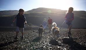 10 luxury family and friendly uk holidays tin box traveller