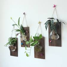vintage hanging glass terrarium container hydroponic vase wall