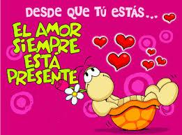 imagenes de amor para mi pc gratis de una tortuga de amor para que descargues en tu computadora gratis