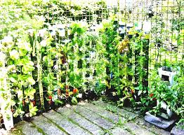 home vegetable garden ideas best 25 small gardens on pinterest