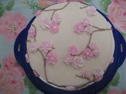 Cake Decorating Classes Dundee Hamlyn Cake Design And Decorating Course Download Books To Ipad