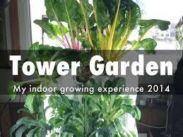 tower garden by eric su