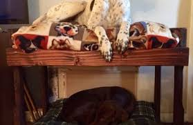 Doggie Bunk Beds Creating Diy Bunk Beds Bed Linen Gallery