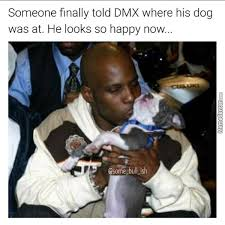 Dmx Meme - dmx memes best collection of funny dmx pictures